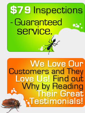 Antworks Pest Control | Exterminator | Vancouver WA and ...